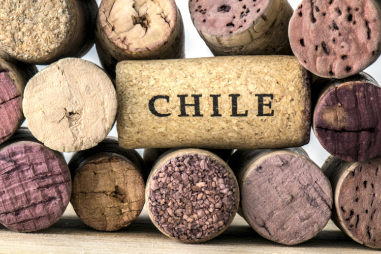One Cork Of A Wine Bottle Of Chile, Surrounded By Many Corks